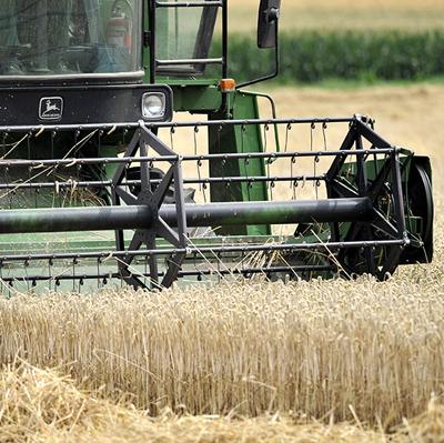 Content-Heimische-Landwirtschaft.jpg